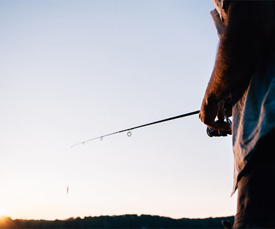go fish! 5 ways to keep bugs away while fishing